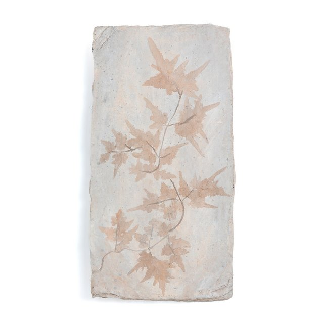 Επιτοίχιο διακοσμητικό από συνθετική ρητίνη Υ50,5 εκ., Fossilis