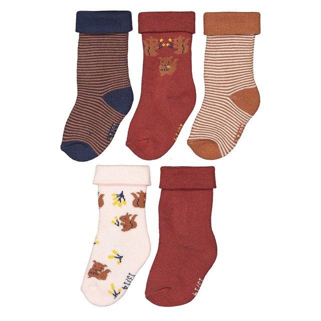 Σετ 5 ζευγάρια κάλτσες από οργανικό βαμβάκι, 13|14 - 19|20